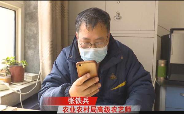 """衡水饶阳县疫情防控与春耕备播"""""""